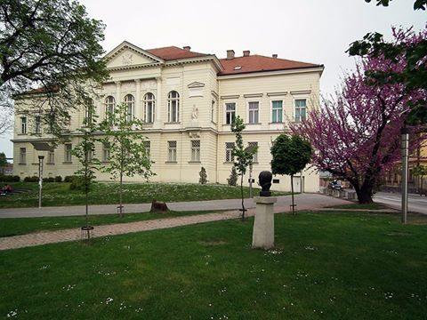 Музеј Срема, Сремска Митровица