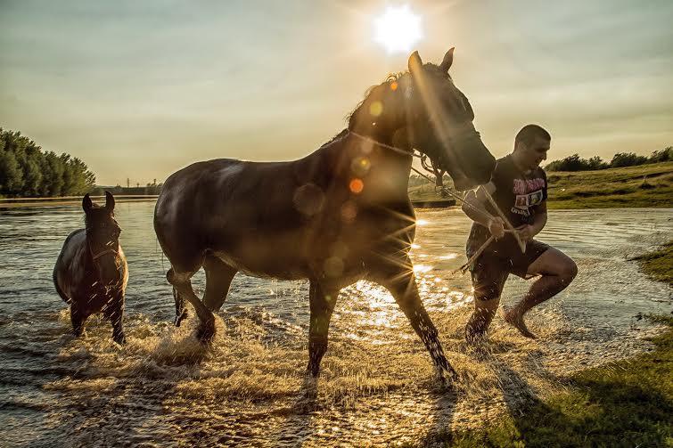 Јан Вало - Магични коњи, изложба МОј музеј мој град, Врбас