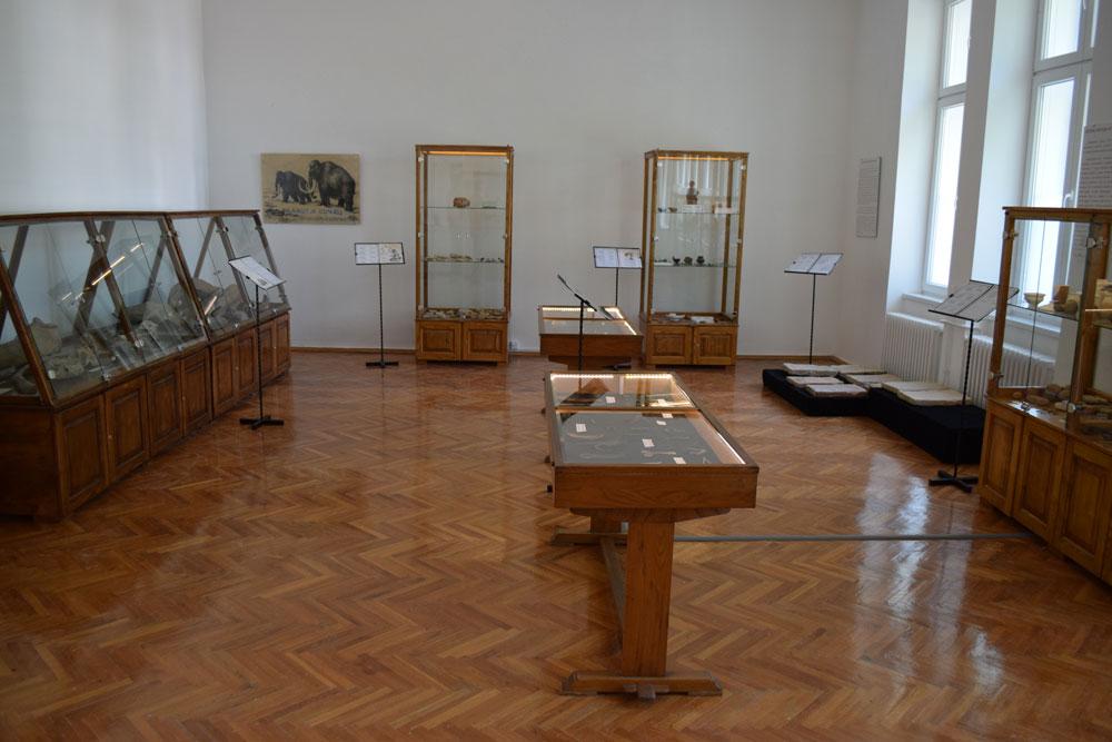 Muzej grada Bačka Palanka, arheološko odeljenje