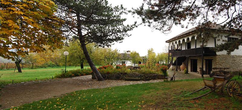 Arheo-etno park u Ravni,  Zavičajni muzej Knjaževac