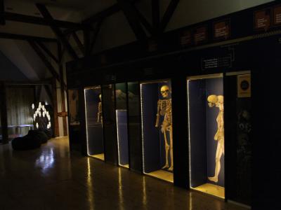Postavka Gradskog muzeja u Subotici