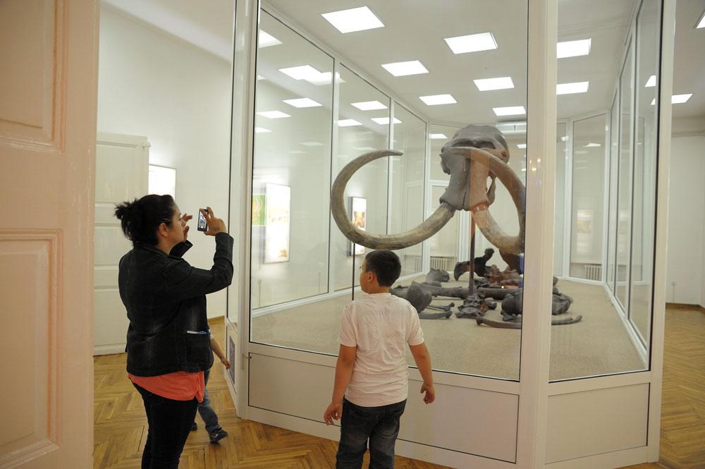 Stalna postavka u  Narodnom muzeju Kikinda