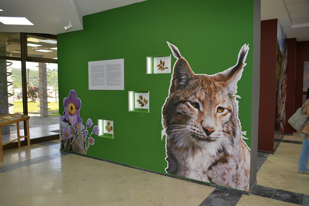 """Izložba, Nacionalni park Đerdap, """"Muzeji za 10"""", 2021. godine"""
