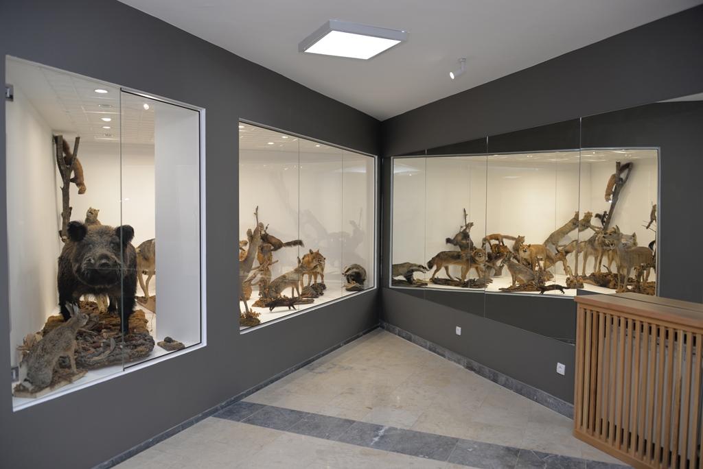 """Izložbeni eksponati, Nacionalni park Đerdap, """"Muzeji za 10"""", 2021. godine"""