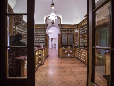 Gradski muzej Vršac, Apoteka na stepenicama, Izložba Umetnost farmacije, Muzeji za 10, 2021.