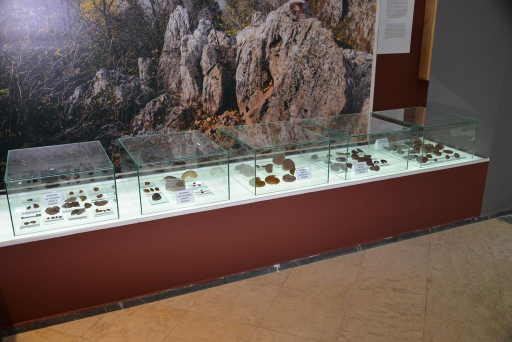 """Postavka muzeja, Nacionalni park Đerdap, """"Muzeji za 10"""", 2021. godine"""