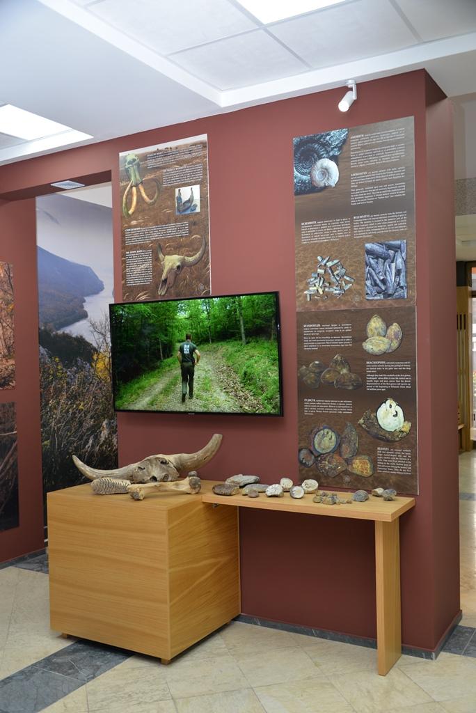 """Postavka, Nacionalni park Đerdap, """"Muzeji za 10"""", 2021. godine"""