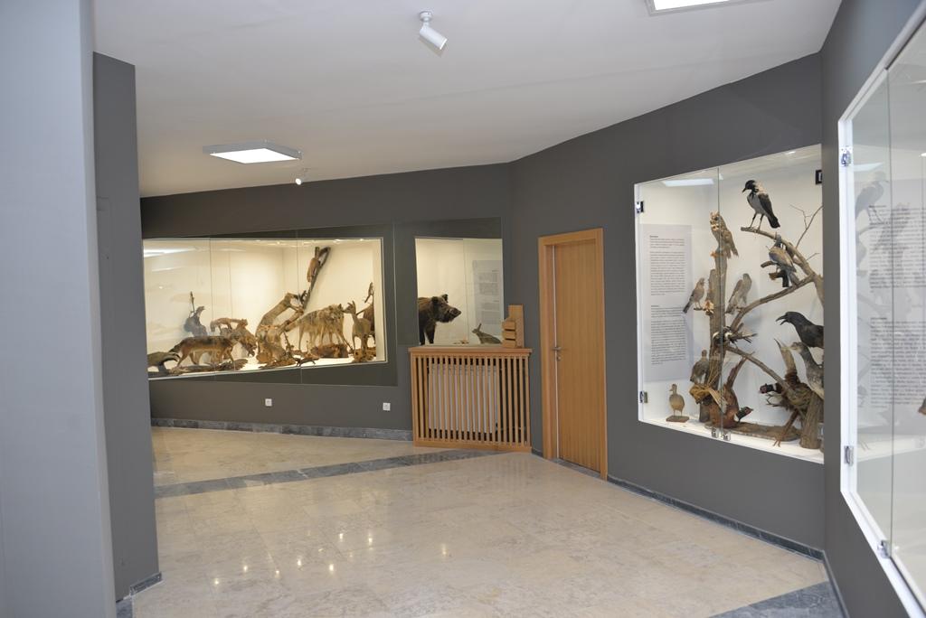 """Postavke, Nacionalni park Đerdap, """"Muzeji za 10"""", 2021. godine"""