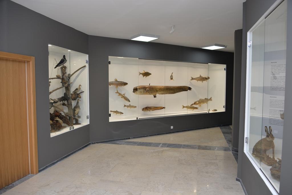 """Prostorija, Nacionalni park Đerdap, """"Muzeji za 10"""", 2021. godine"""