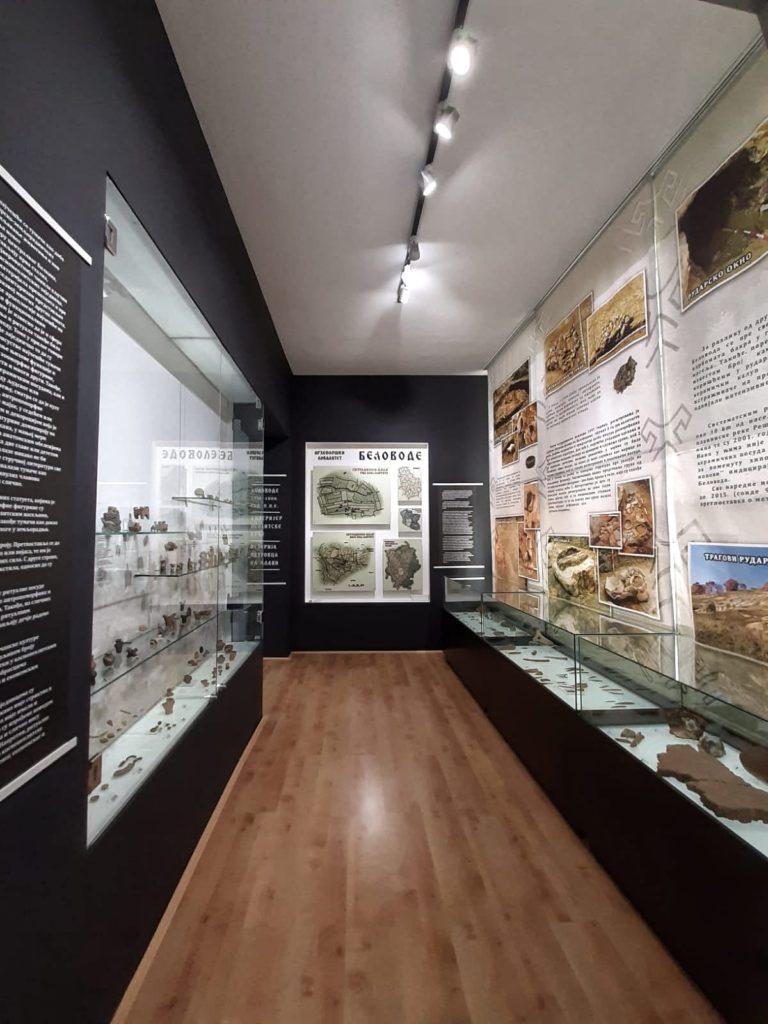 Stalna postavka, Zavičajni muzej Petrovac na Mlavi, Manifestacija Muzeji za 10, 2021. godine