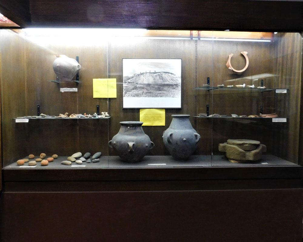 Stalna postavka, Zavičajni muzej Vlasotince, Manifestacija 2021. godine - Muzeji za 10